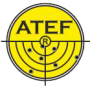 mcith_atef-logo-png.png (16 KB)